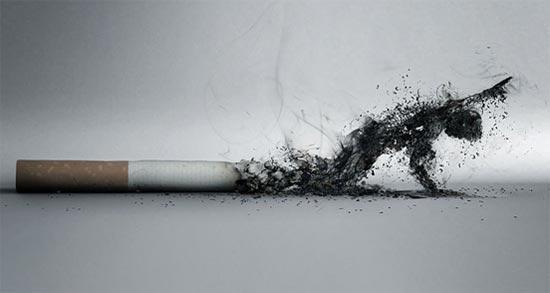Drawn cigarette positive #8