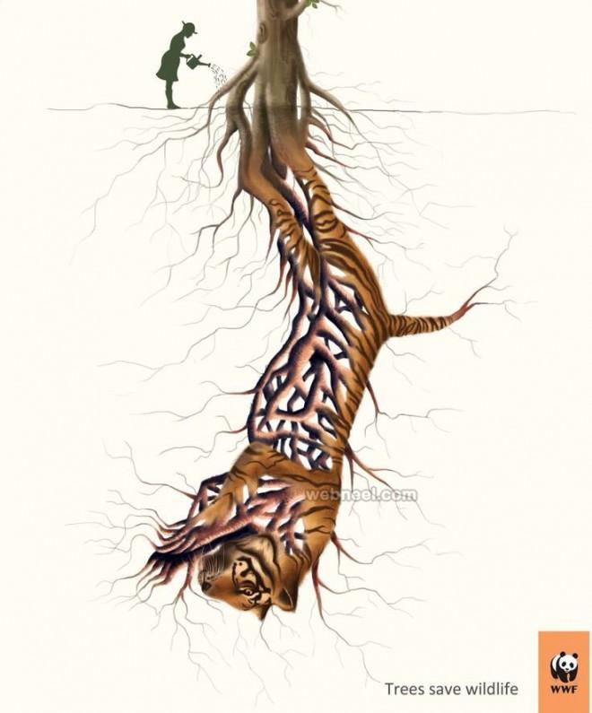 Drawn advertisement Animal advertising  and Deforestation
