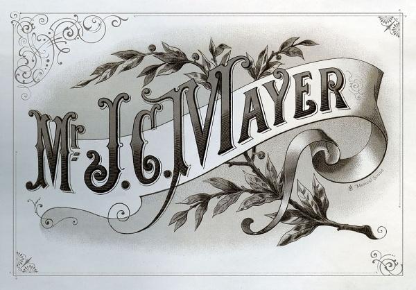 Drawn album cover born and raised Born Album Mayer in Save