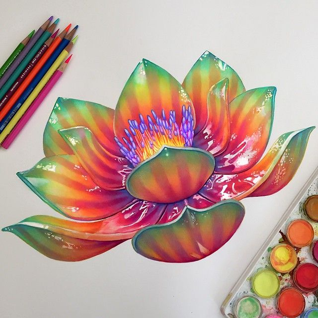 Drawn album cover colourful On 17 COLOURED PENCIL for