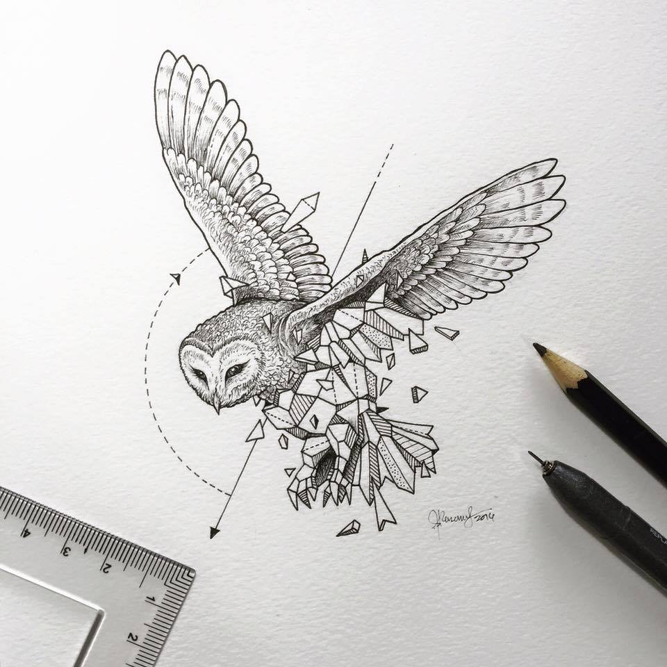 Drawn album cover owl Collection on Beasts  Imgur