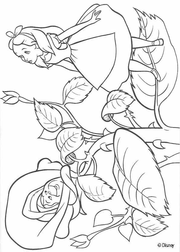 Drawn alice in wonderland coloring pages #9