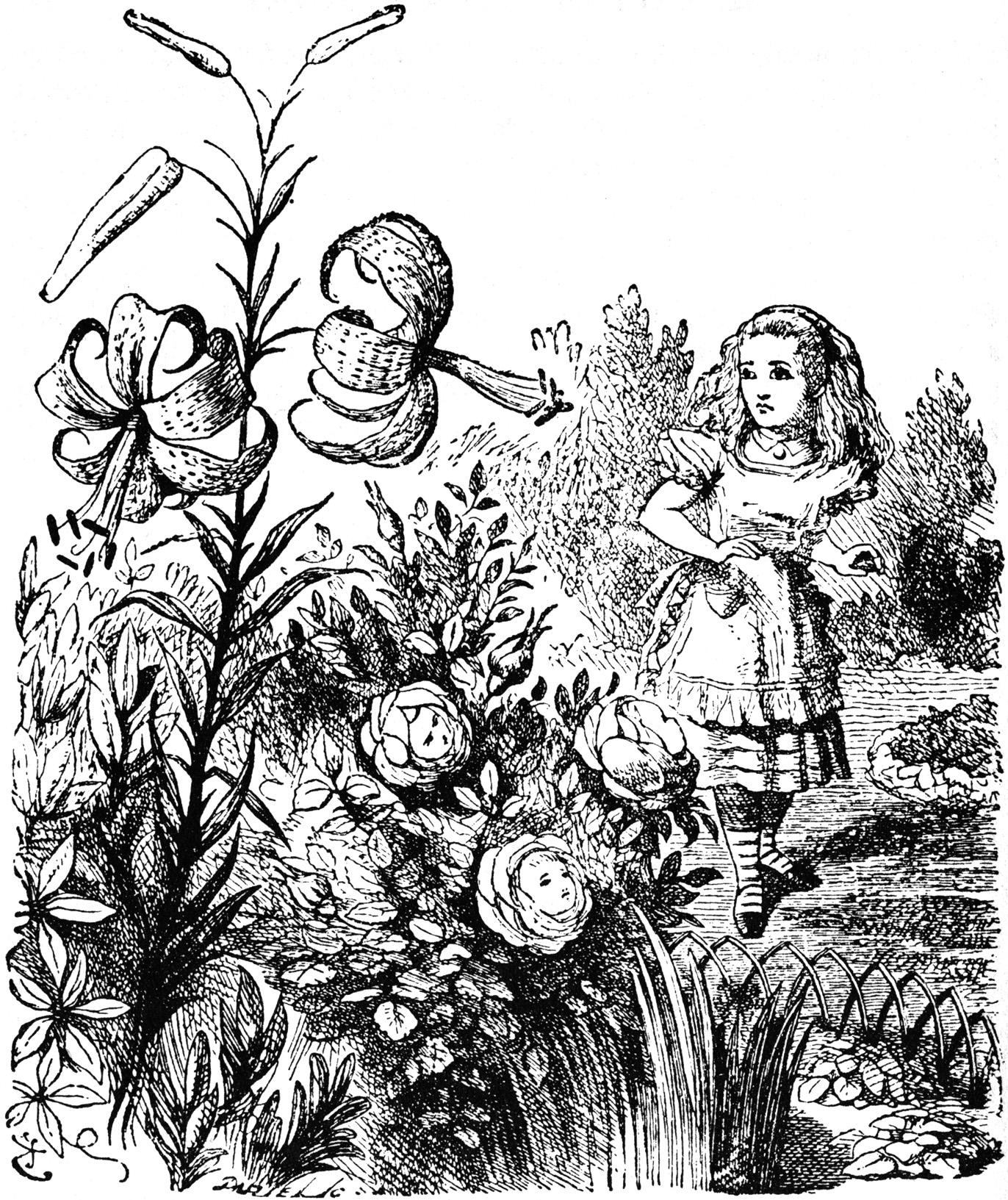 Drawn alice in wonderland old Looking meeting Alice net the
