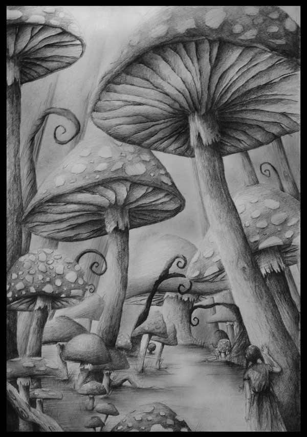 Drawn alice in wonderland scenery In images and 647 on