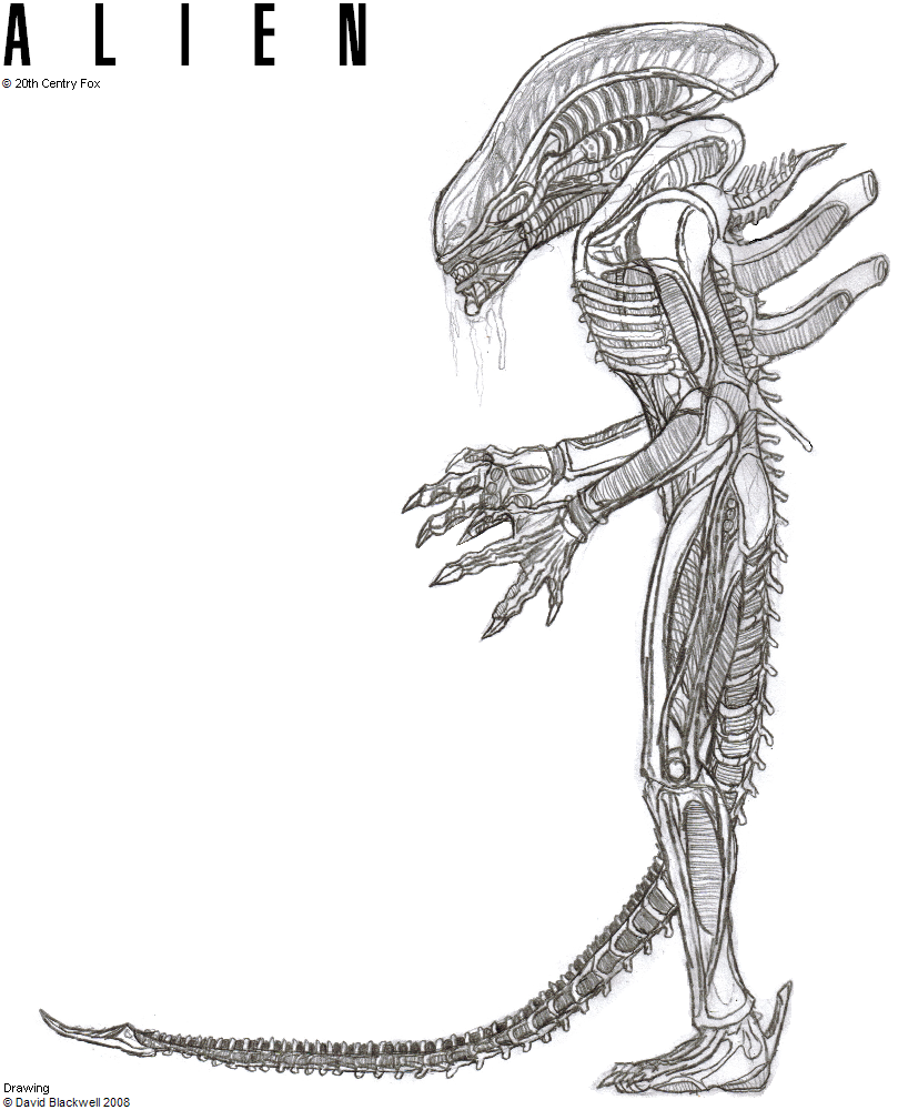 Drawn predator xenomorph Coloring Children Sketch Alien Drawing