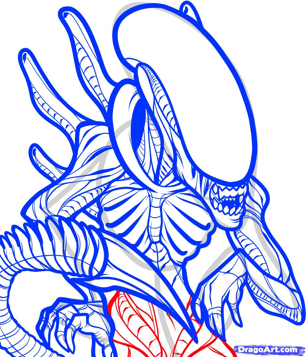 Drawn predator coloring page From predator Vs Step an
