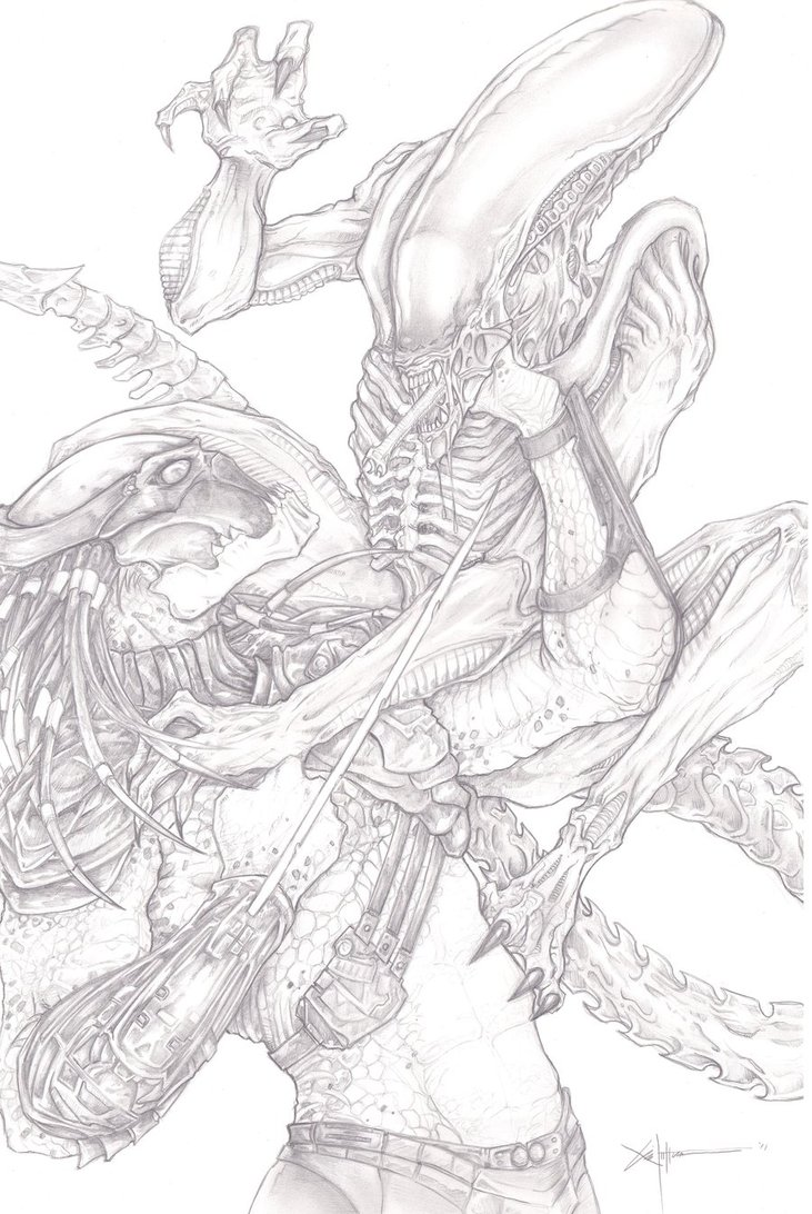 Drawn predator xenomorph Best vs Alien picture Predator