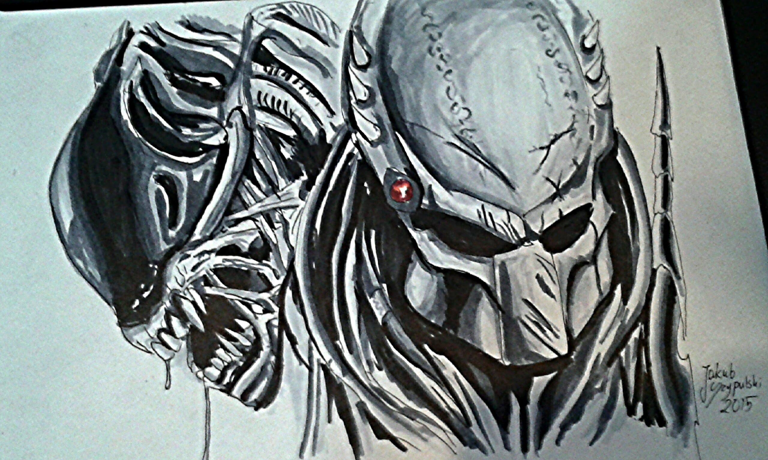 Drawn predator alien vs predator Alien vs [ speed drawing