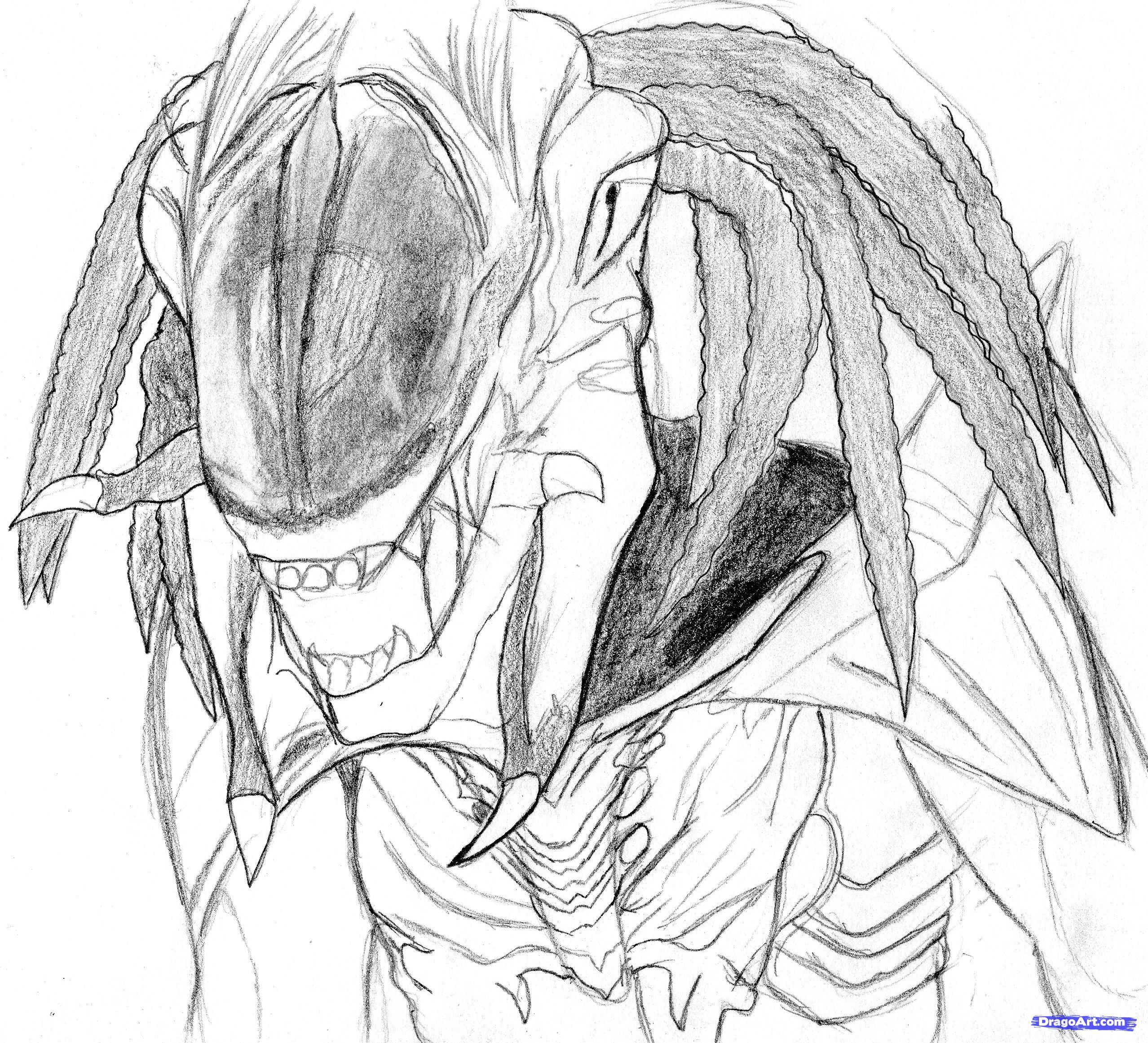 Drawn predator alien vs predator To fi to draw FREE