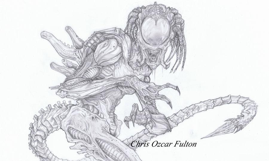 Drawn predator predalien Hybrid by on DeviantArt ChrisOzFulton