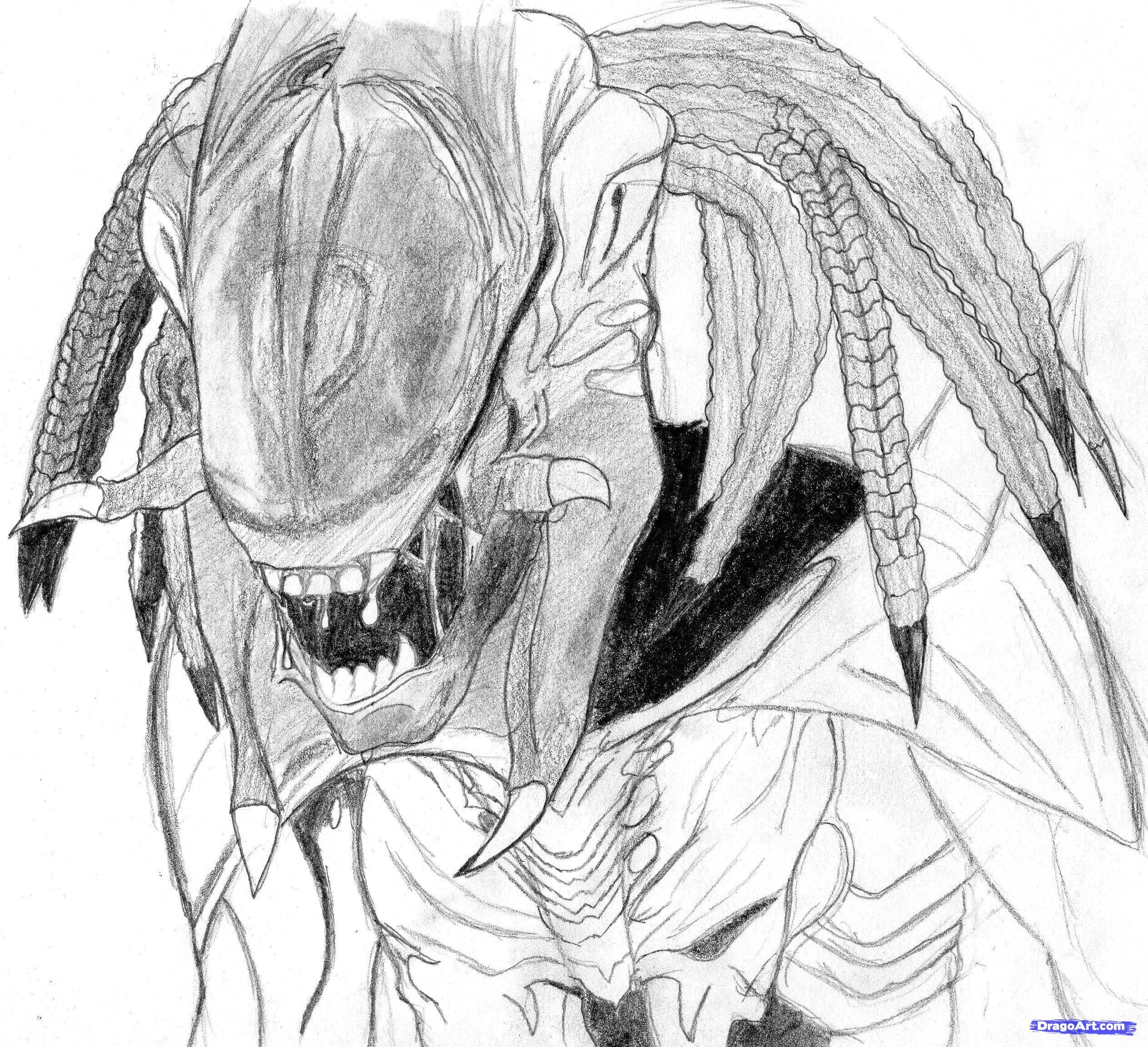 Drawn predator predalien FREE alien draw How Step