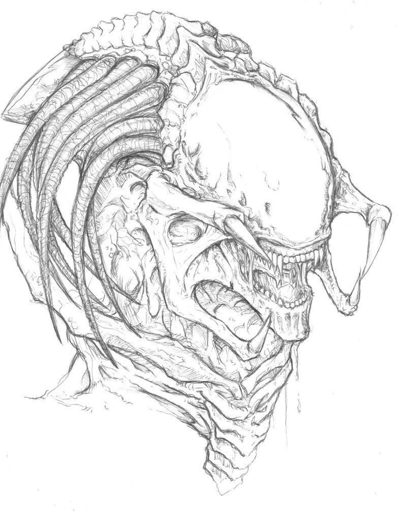 Drawn predator predalien Predalien ChrisOzFulton on DeviantArt Pinterest