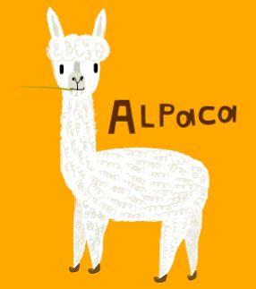 Drawn alpaca Best Alpaca on Pinterest alpaca