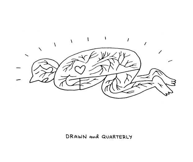 Drawn amd Drawn Brooklyn and & Book