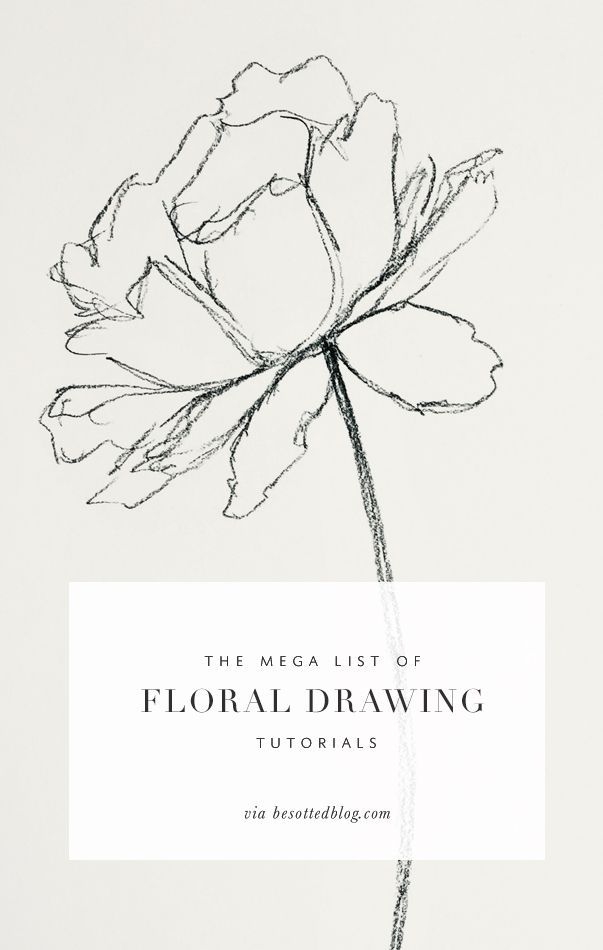 Drawn amd List floral on drawing of