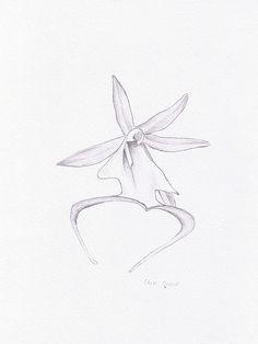Drawn amd Drawn orchid ghost Notebook drawn