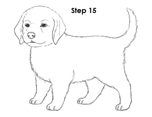 Drawn puppy cool dog Puppy atrinrayaneh Drawing Puppy 15
