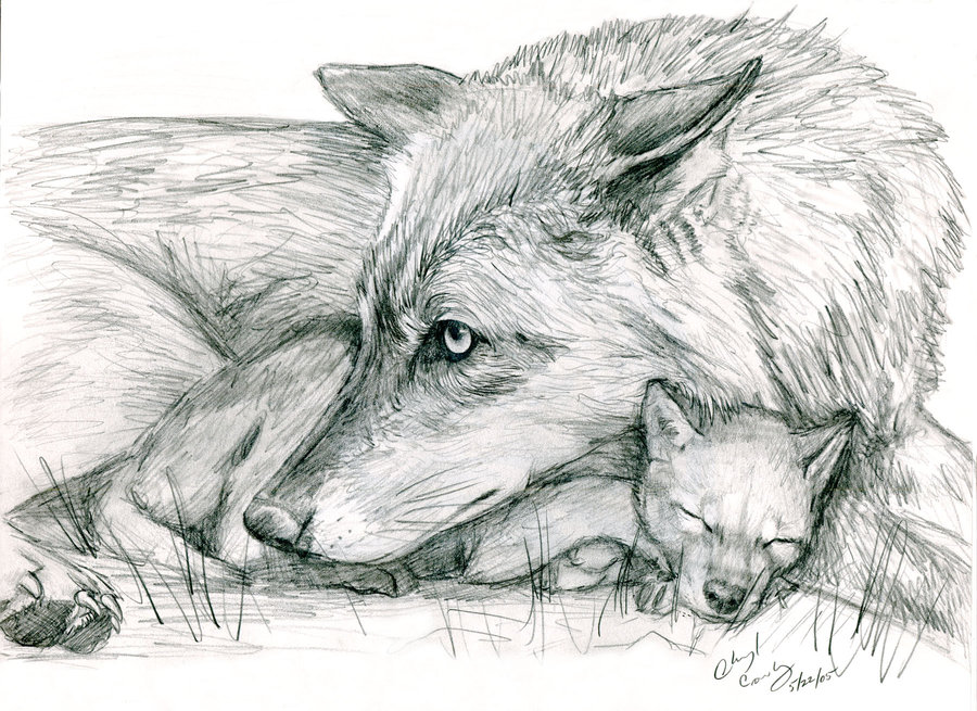 Drawn howling wolf wolf pup And  by silvercrossfox @deviantART