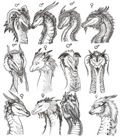 Drawn amour dragon head Heads Find on reference archir