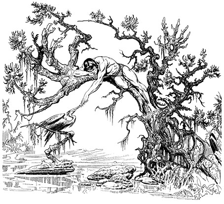 Drawn amour jungle By March And Guptill Dalí…