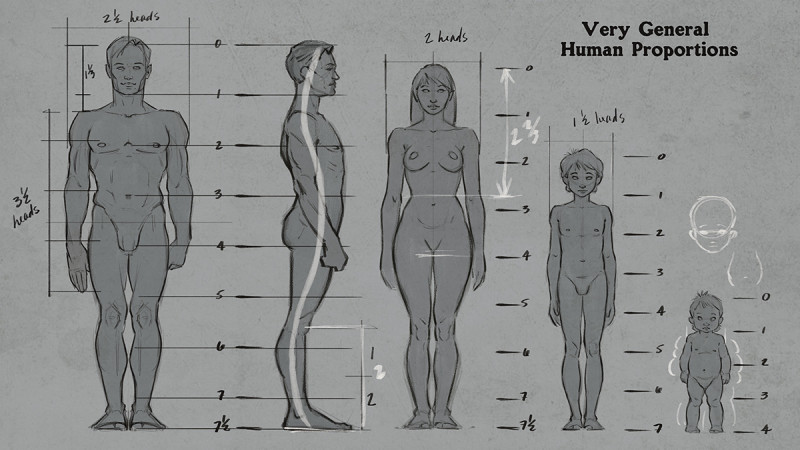 Drawn anatomy Figure to Tutorial Drawing Lessons