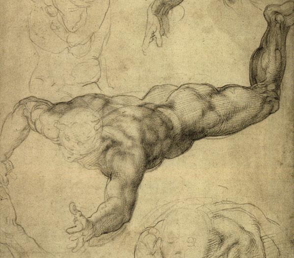 Drawn anatomy Drawing ' Lesson: anatomy Hands