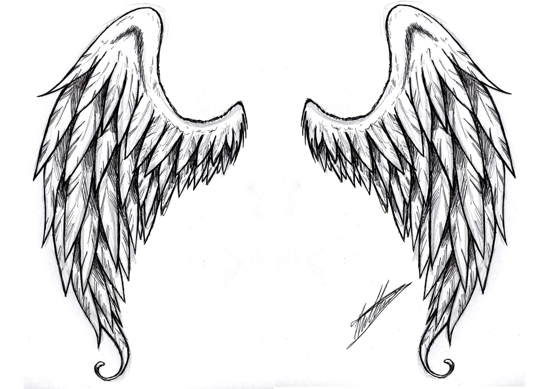 Drawn angel angel feather On 51 best Angels Realistic