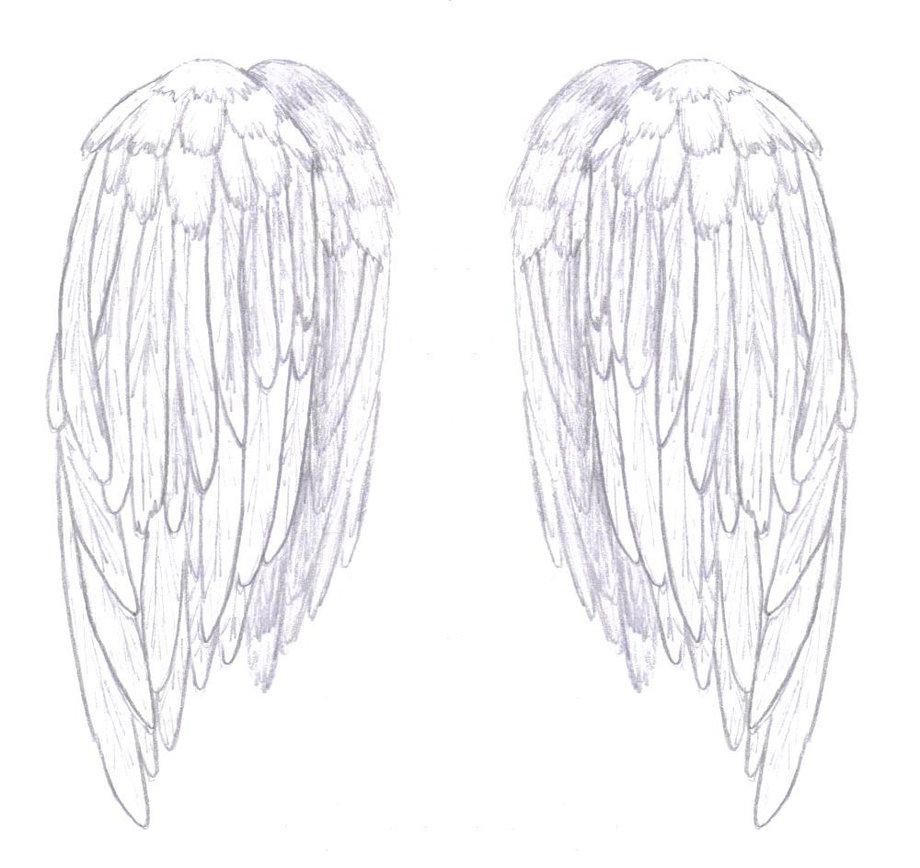 Drawn angel folded wing Wings Folded by wings Skin