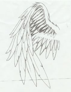 Drawn angel folded wing Design :: Wing Wing ::