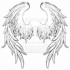 Drawn angel folded wing How Illustration Wings Wing Vector