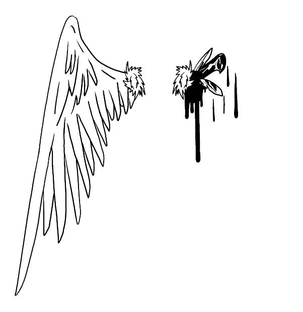 Drawn angel torn wing #14