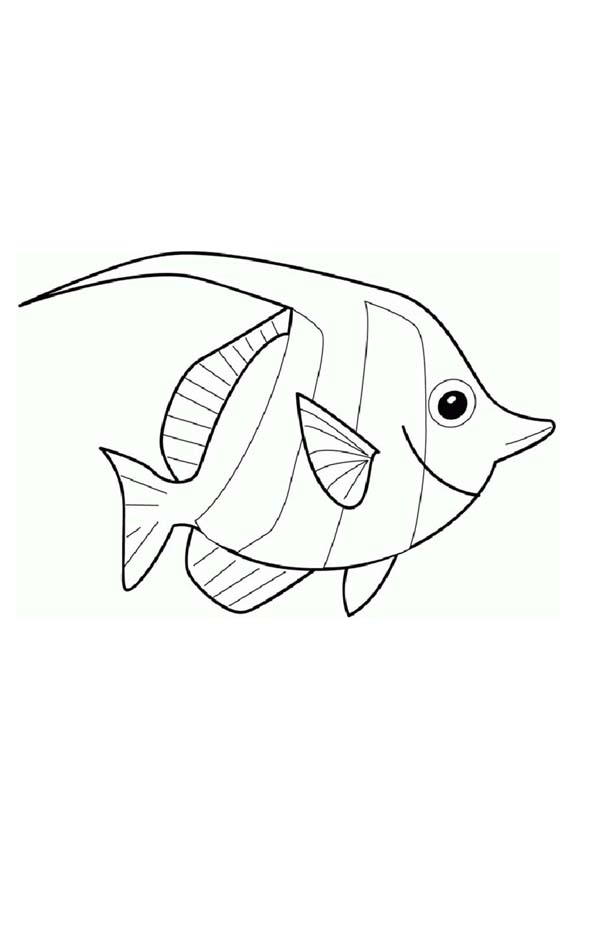 Angelfish clipart little fish Angel Cartoon and Download clipart