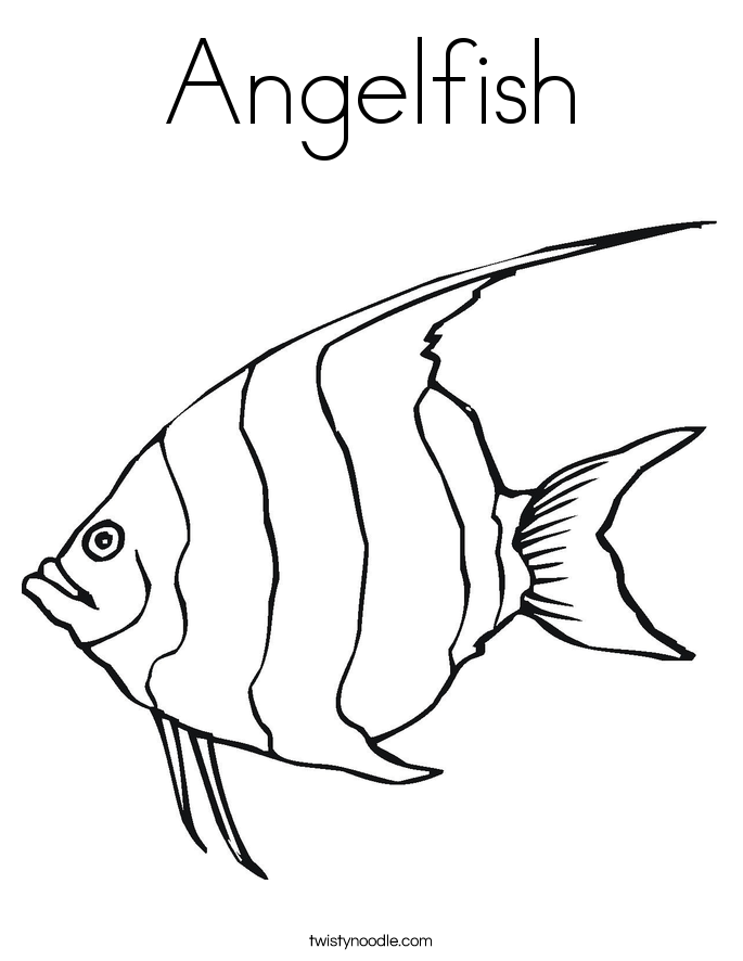 Angelfish clipart black and white Angelfish Coloring Coloring Page Page