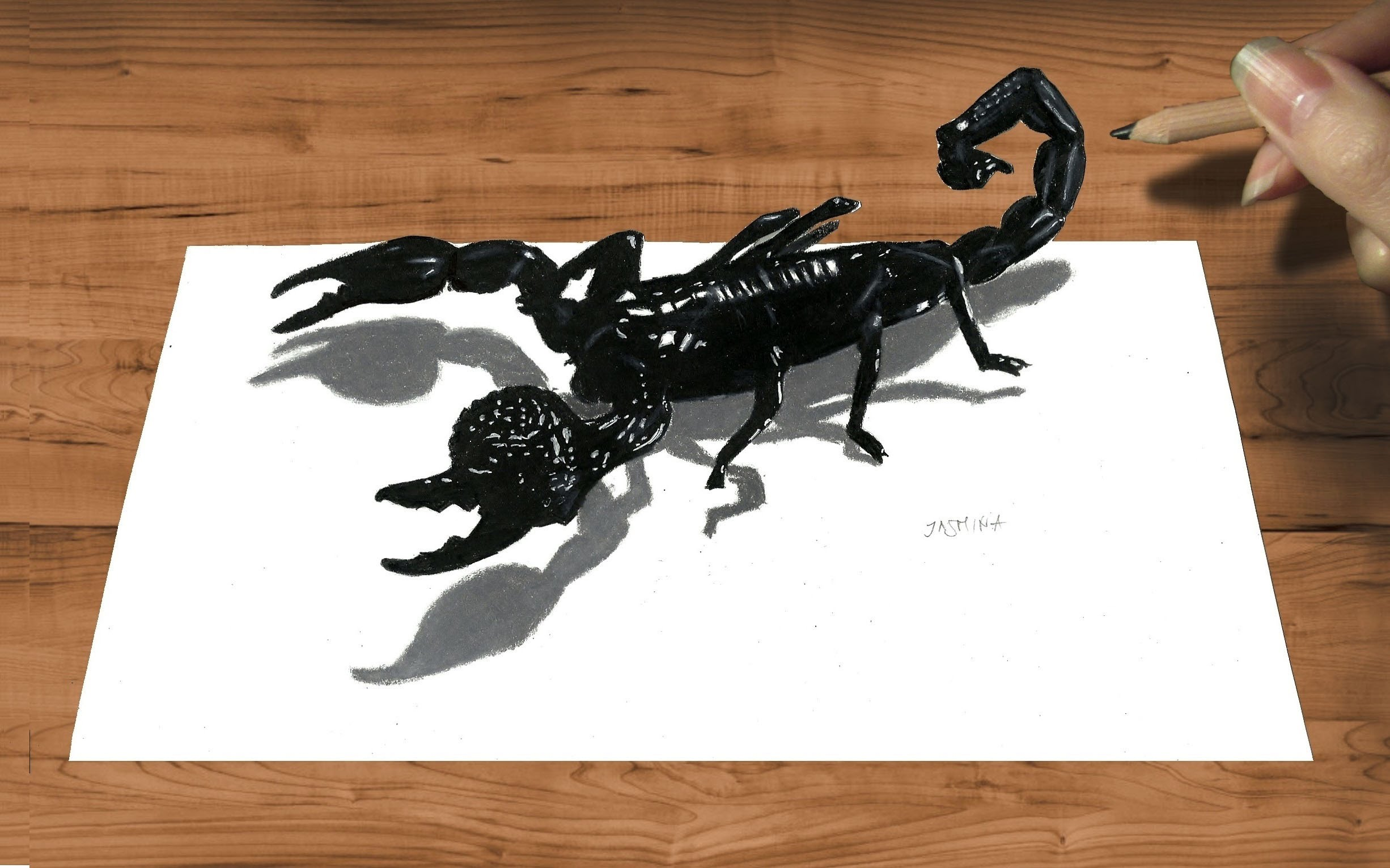 Drawn scorpion pencil drawing Speed 3D  to Pencil