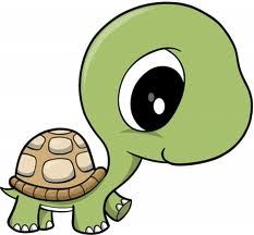 Drawn sea turtle big eye Coloring  Pages Print Clipart