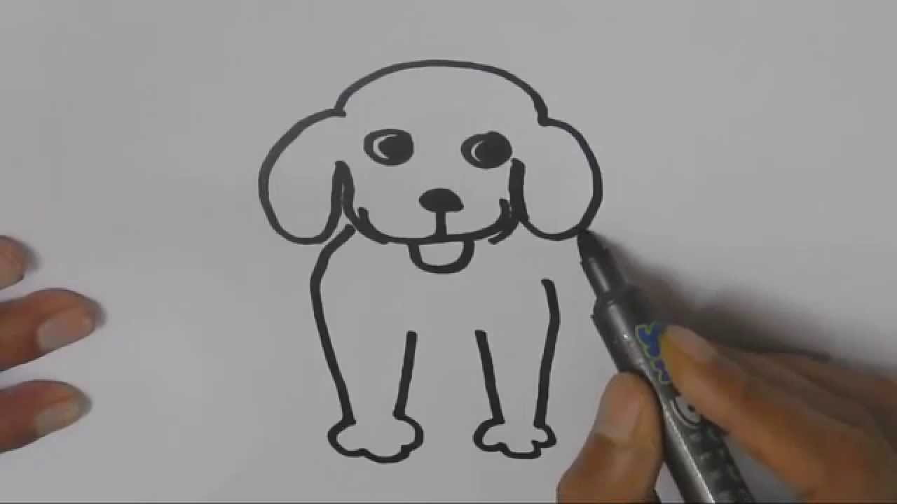 Drawn pug line drawing  steps a a How
