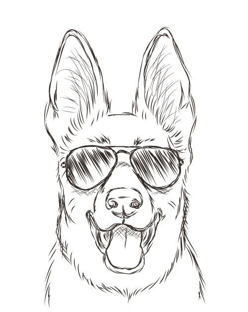Drawn puppy cool dog Scratchbook: Pinterest drawings Michele 25+