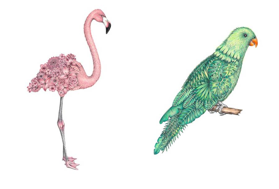 Drawn animal flamingo #12