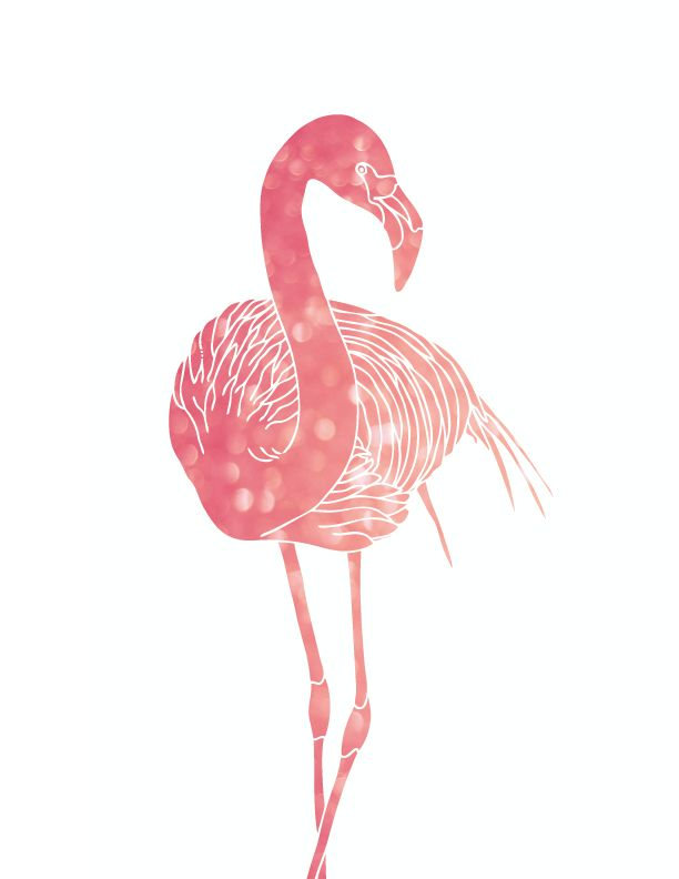 Drawn animal flamingo #13