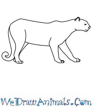 Drawn jaguar easy Puma  to a Draw