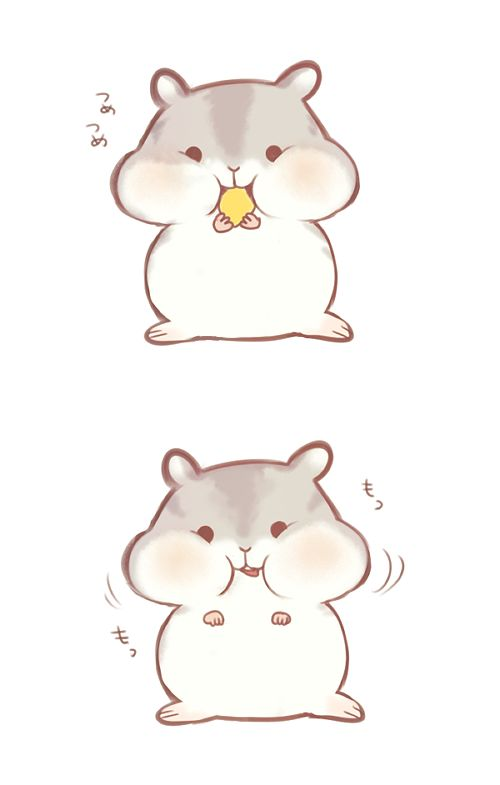 Drawn hamster cartoon Pinterest Pin drawings on this