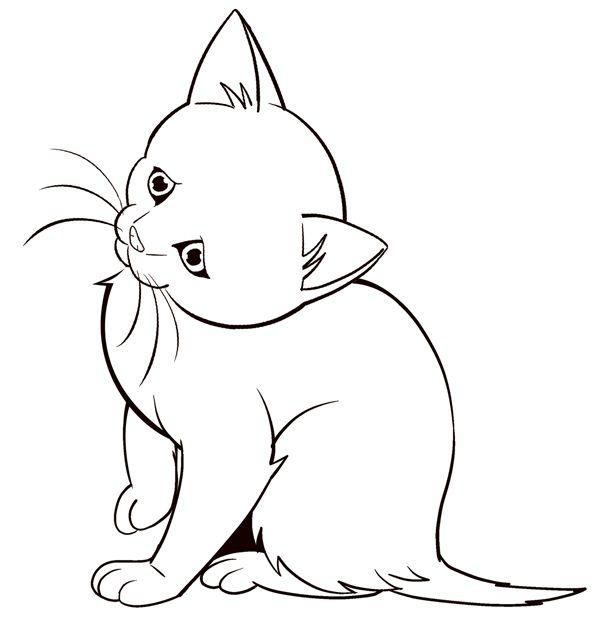 Drawn animal kitten #15
