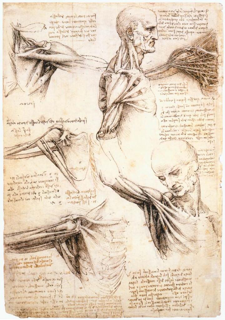 Drawn finger Leonardo Leonardo (with Exercises da