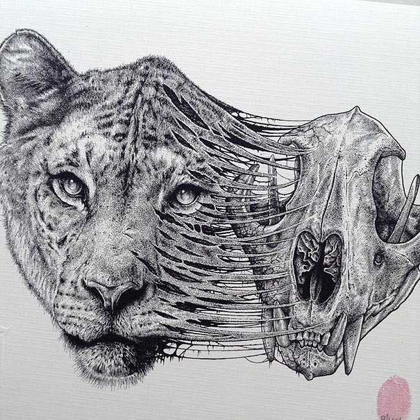 Drawn jaguar skull 10 In skull paul Animals