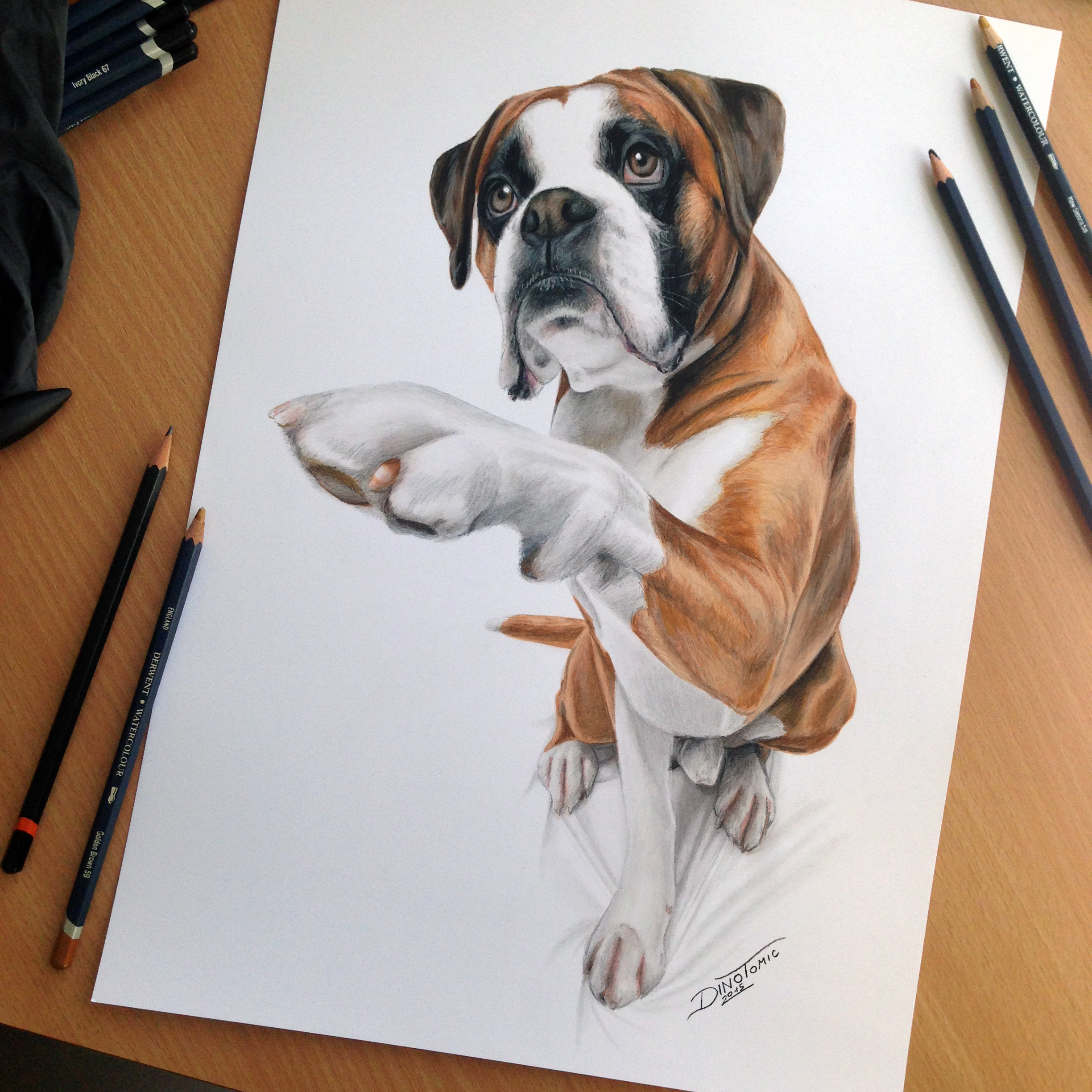 Drawn pug draw a One // skills Dog got