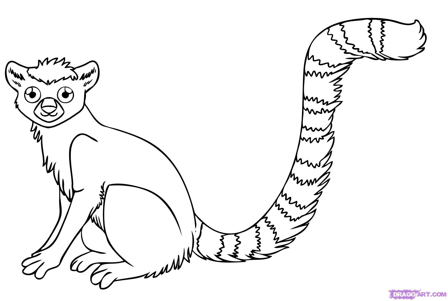 Drawn rainforest animated Step Lemur step how 7