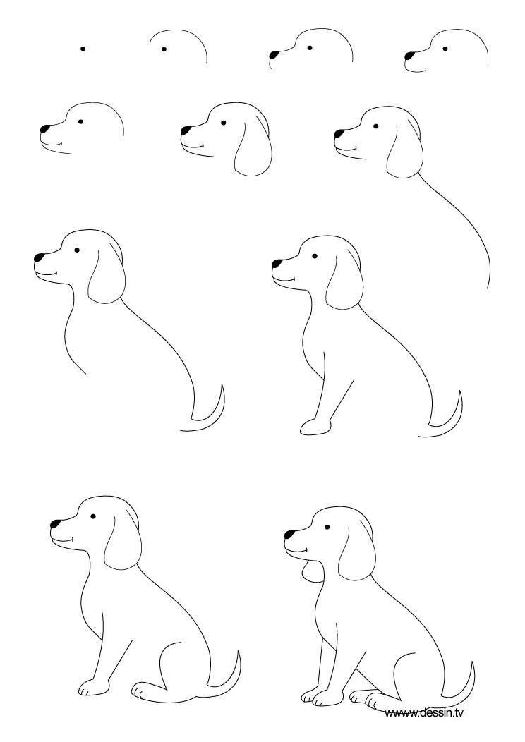 Drawn puppy step by step Learn by Instructions love to