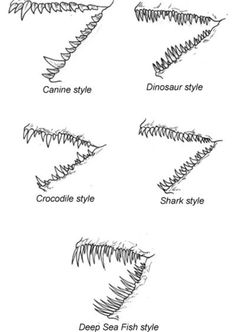 Drawn teeth different / AnimalsDragon teeth Draw Dragon: