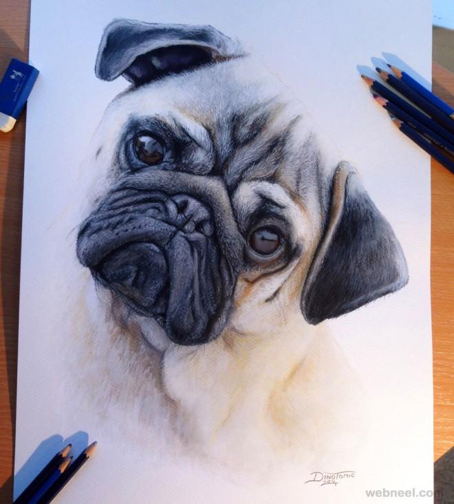 Drawn pug head For  to Animal animal