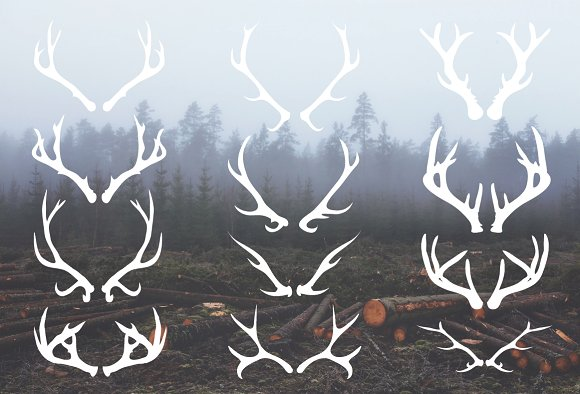 Drawn antler Deer Vectors 12 Illustrations Hand